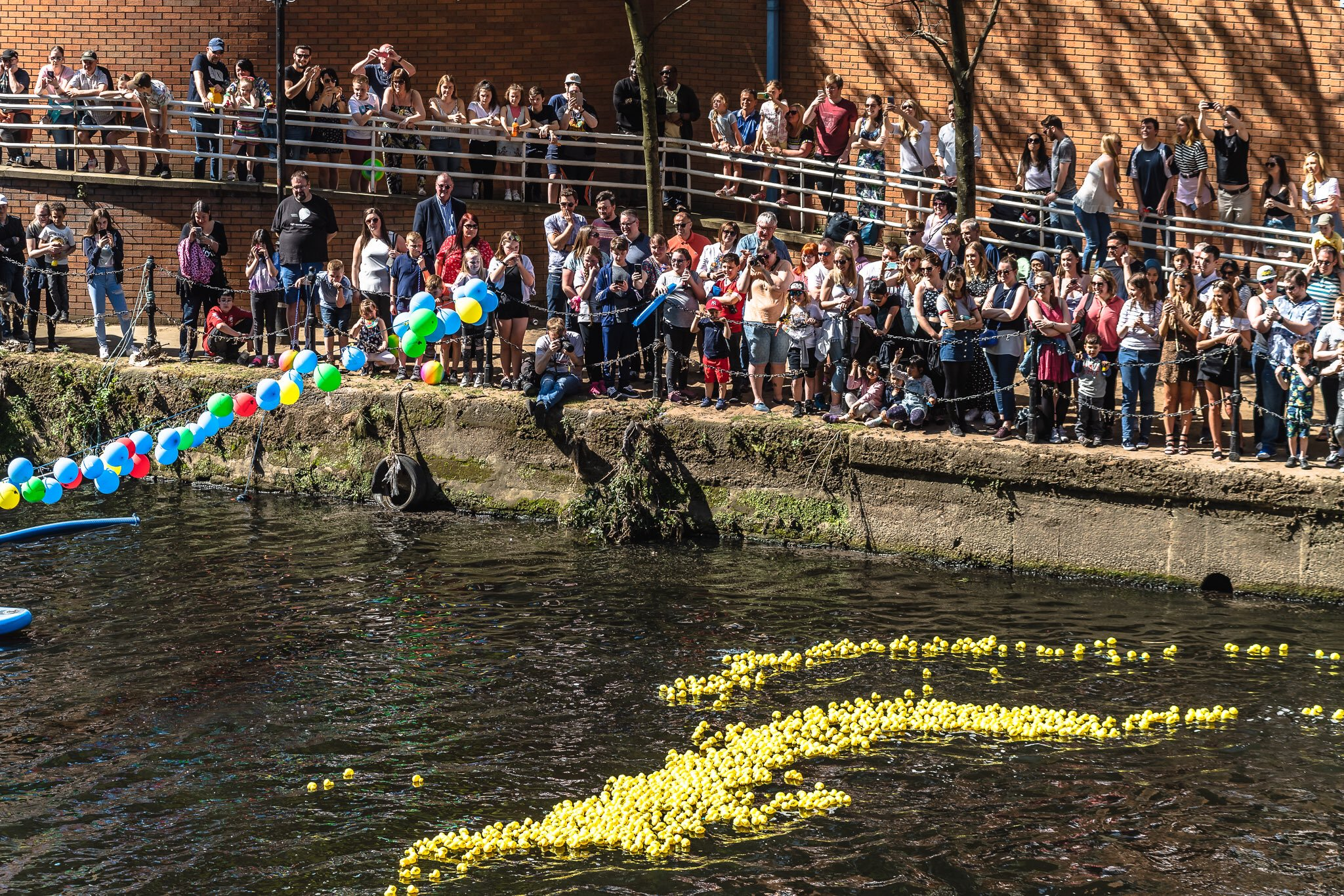 Crowds at Manchester Duck Race